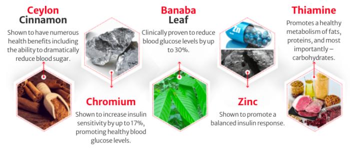 Blood Sugar Defense Ingredients