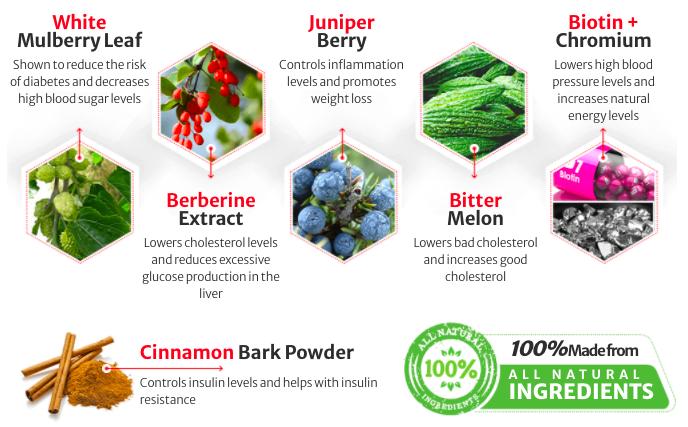 Stimula Blood Sugar Support Ingredients