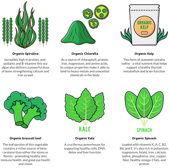 Cinderella Lean Greens Solution Ingredients