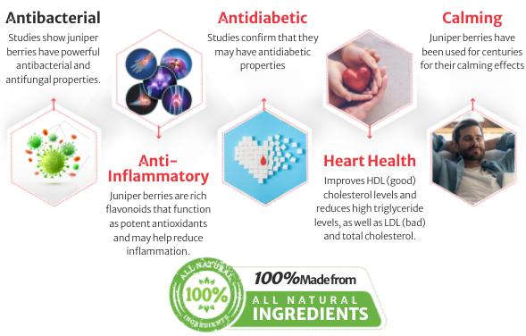 Advanced Formula Blood Sugar Defense Ingredients