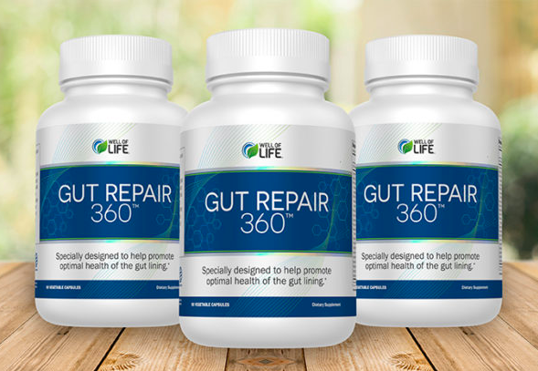 Gut Repair 360 Review