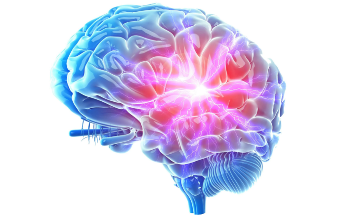 The Brain Booster Reviews